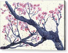 Plum Tree Acrylic Print by Jennifer Gonzalez