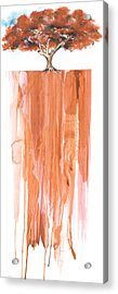Poinciana Tree Red Acrylic Print by Anthony Burks Sr