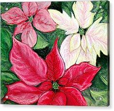 Poinsettia Pastel Acrylic Print by Nancy Mueller