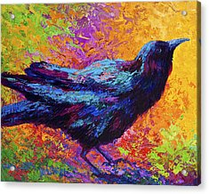 Poised - Crow Acrylic Print by Marion Rose