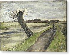 Pollard Willow, 1882 Acrylic Print by Vincent Van Gogh