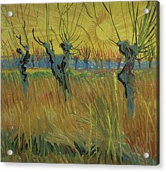 Pollarded Willows And Setting Sun Acrylic Print by Vincent Van Gogh