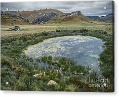 Pond At Castle Hill Acrylic Print by Jan Pudney