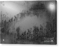 Pond By Moonlight Acrylic Print by John Krakora