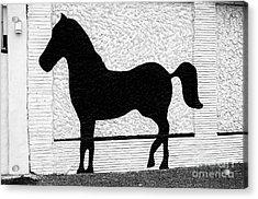 Pony Made Of Stone Acrylic Print by John Rizzuto