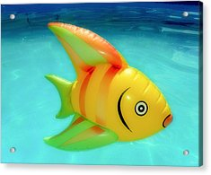 Pool Toy Acrylic Print by Tony Grider