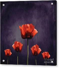 Poppies Fun 01b Acrylic Print by Variance Collections