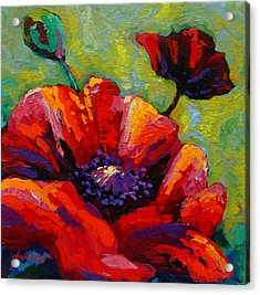 Poppy I Acrylic Print by Marion Rose