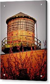 Portland Water Tower IIi Acrylic Print by Albert Seger