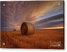Prairie Harvest Acrylic Print by Dan Jurak