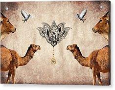 Praise The Lord Series 4 Acrylic Print by Sumit Mehndiratta