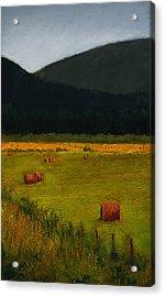 Priest Lake Hay Bales Acrylic Print by David Patterson