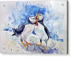 Puffins Acrylic Print by Kovacs Anna Brigitta