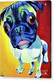 Pug - Lola Acrylic Print by Alicia VanNoy Call