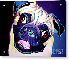 Pug - Rider Acrylic Print by Alicia VanNoy Call