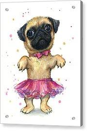 Pug In A Tutu Acrylic Print by Olga Shvartsur