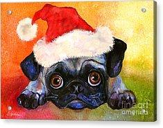Pug Santa Portrait Acrylic Print by Svetlana Novikova