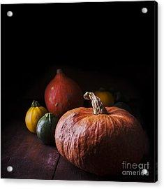 Pumpkins Acrylic Print by Jelena Jovanovic