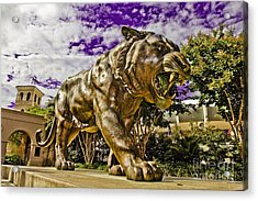 Purple And Gold Acrylic Print by Scott Pellegrin