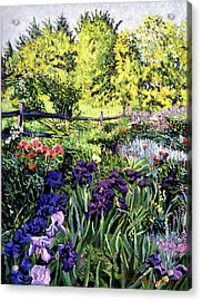 Purple Garden Acrylic Print by David Lloyd Glover