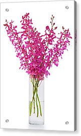 Purple Orchid In Vase Acrylic Print by Atiketta Sangasaeng