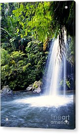 Quebrada Juan Diego Waterfall Acrylic Print by Thomas R Fletcher