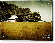 Quiet Acrylic Print by Lois Bryan