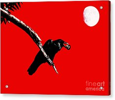 Quoth The Raven Nevermore . Red Acrylic Print by Wingsdomain Art and Photography