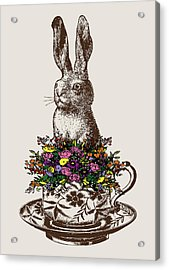 Rabbit In A Teacup Acrylic Print by Eclectic at HeART