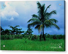 Rain Cloudsover Dominica Acrylic Print by Thomas R Fletcher