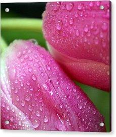 Rain On Me Acrylic Print by Linda Mishler