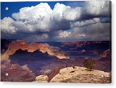 Rain Over The Grand Canyon Acrylic Print by Mike  Dawson