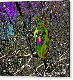 Rainbow Explosion Acrylic Print by JoAnn SkyWatcher