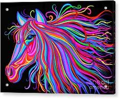 Rainbow Horse  Acrylic Print by Nick Gustafson