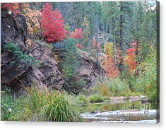 Rainbow Of The Season With River Acrylic Print by Heather Kirk
