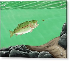 Rainbow Trout - Enticed From The Pool Acrylic Print by Ralph Martens