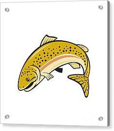 Rainbow Trout Jumping Cartoon Isolated Acrylic Print by Aloysius Patrimonio