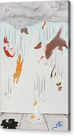Raining Cats And Dogs Acrylic Print by Michelle Miron-Rebbe