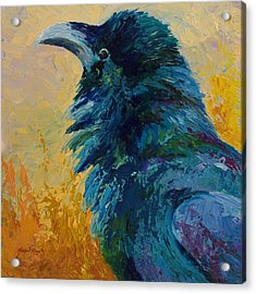 Raven Study Acrylic Print by Marion Rose