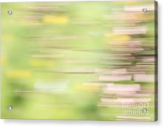 Rectangulism - S04a Acrylic Print by Variance Collections