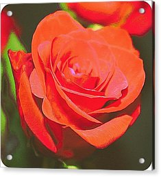 Red And Orange Acrylic Print by Cathie Tyler