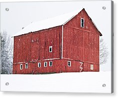 Red Barn Snow Storm  Acrylic Print by Tim Fitzwater