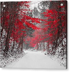 Red Blossoms Horizontal Acrylic Print by Parker Cunningham