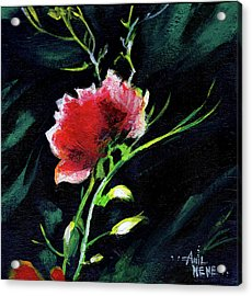 Red Flower New Acrylic Print by Anil Nene