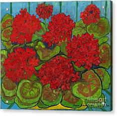 Red Geranium Acrylic Print by Anna Folkartanna Maciejewska-Dyba
