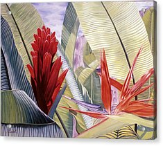Red Ginger And Bird Of Paradise Acrylic Print by Stephen Mack