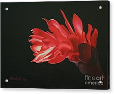 Red Ginger Acrylic Print by Christine Fontenot