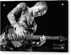 Red Hot Chili Peppers  Acrylic Print by Jenny Potter