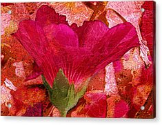 Red Queen Acrylic Print by Tom Romeo