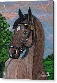 Red Roan Horse Acrylic Print by Anna Folkartanna Maciejewska-Dyba